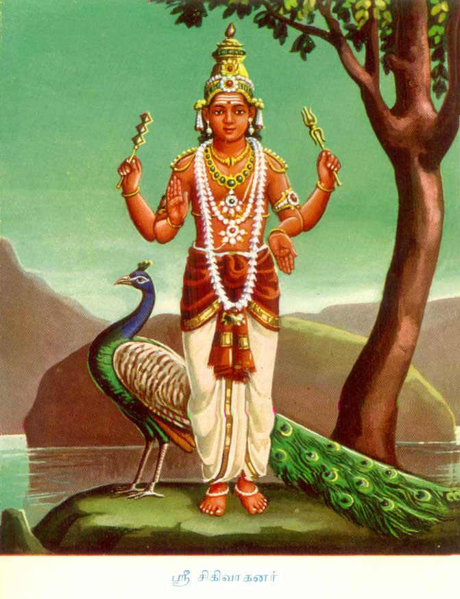 Shikhivahana, Skanda-Murugan whose vehicle is the peacock