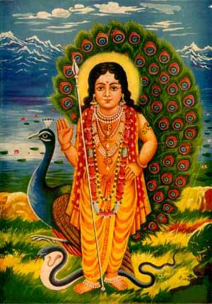 Bala Subramaniyan (28803 bytes)