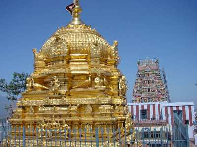 Golden Vimanam, Palani