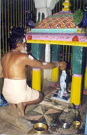 Balananda Sadhu offers milk abhisekam to Pongi
